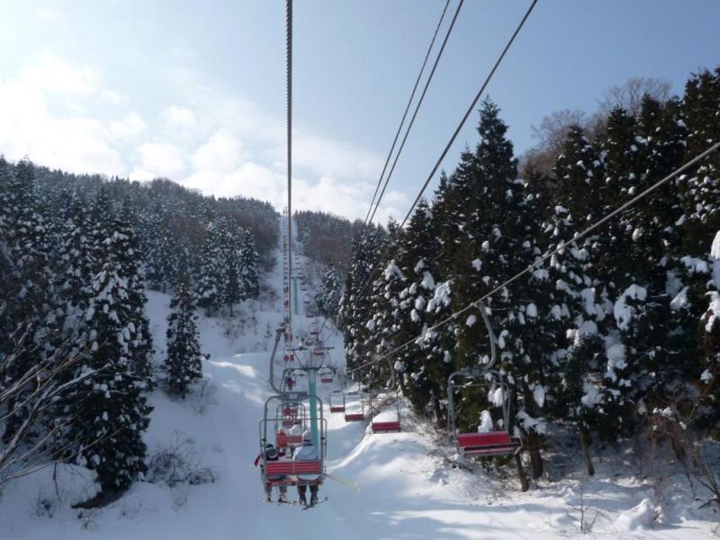 今庄365スキー場・木立の中を進むリフト(鉢伏山国有林・南越前町)