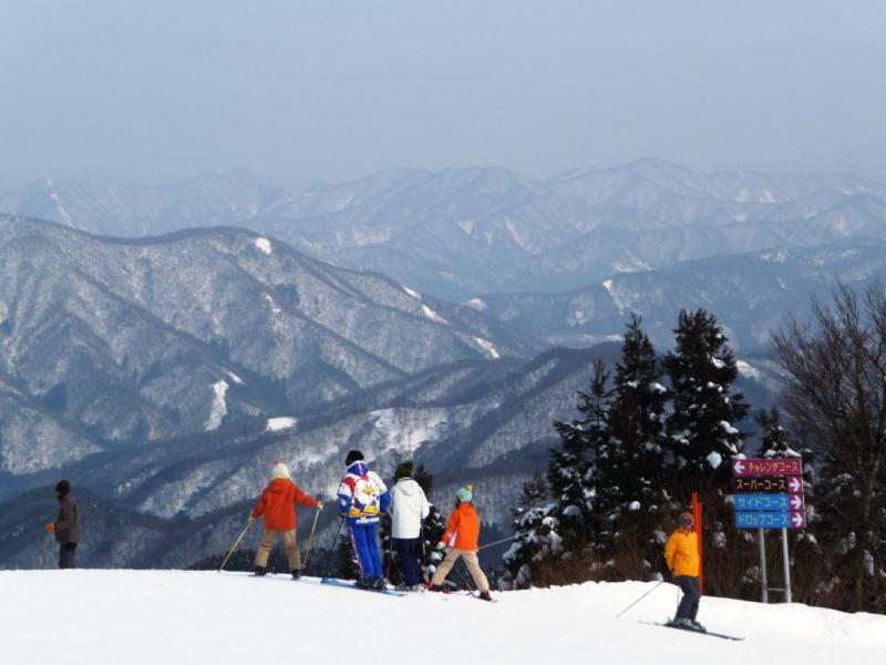 今庄365スキー場(鉢伏山国有林・南越前町)