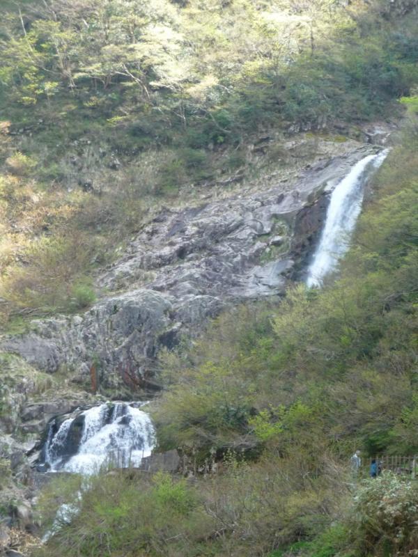 仏御前の滝(仏原国有林・大野市)