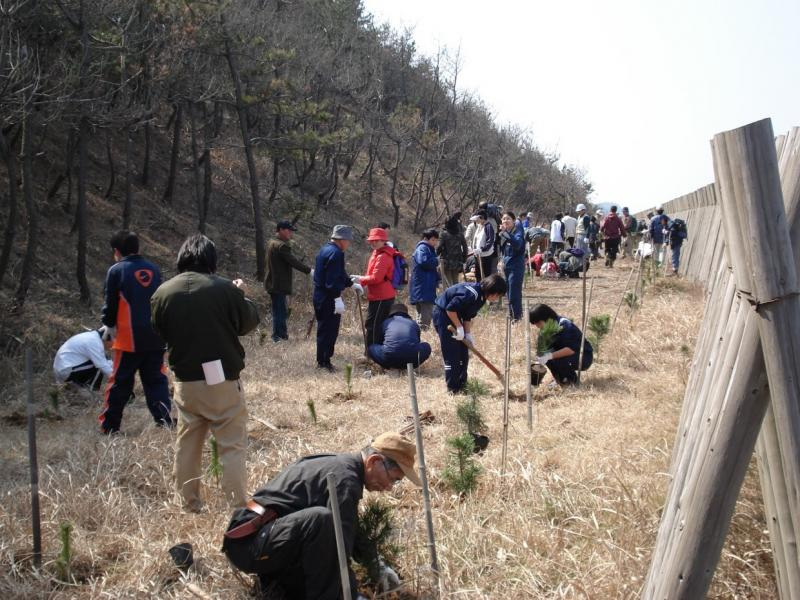 市民による植樹活動(北潟国有林・あわら市)