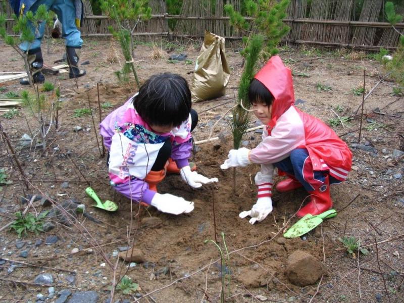 植樹活動:北潟国有林(あわら市)