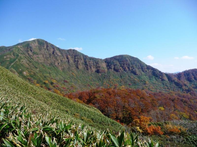 経ヶ岳国有林の一部は大型鳥類生息保護林に指定、その周辺は白山山系緑の回廊に指定されている。