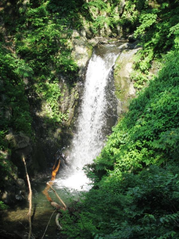 夜叉滝:岩谷国有林(南越前町)