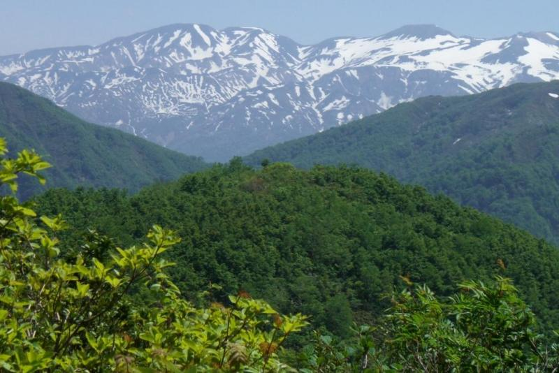 経ヶ岳、大野市内からの遠望