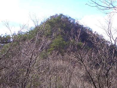 葦獄山(冬) 倉造山国有林