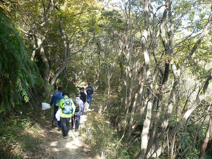 クリーンハイキング:宝塚自然休養林