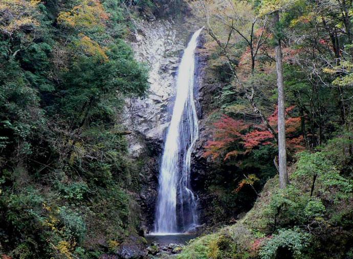 不動滝:赤西国有林