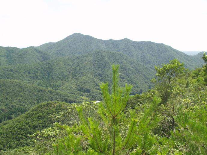 三草山国有林