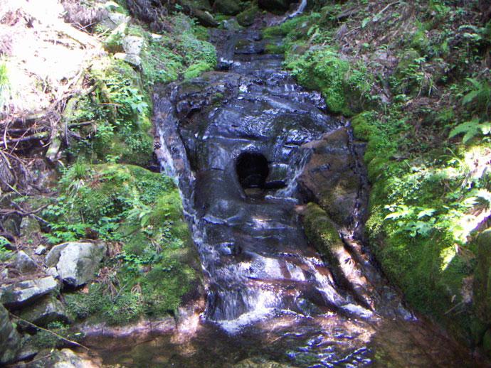鍋の穴:鍋ヶ谷国有林