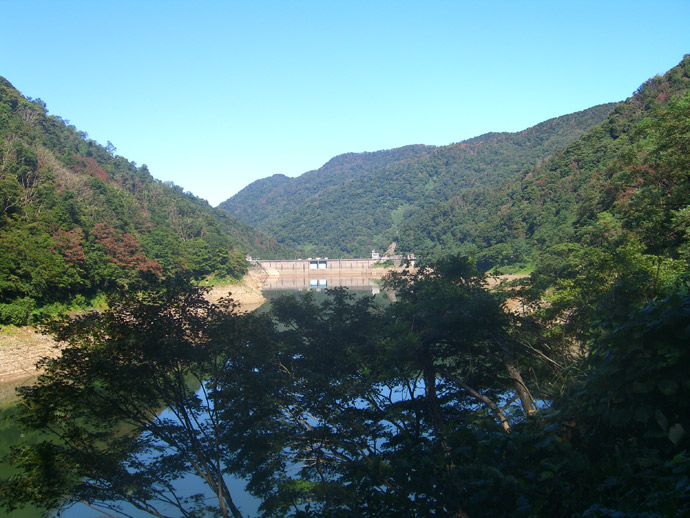 犀川ダム:犀川国有林
