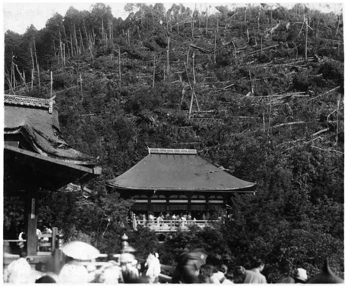 高台寺山(室戸台風)