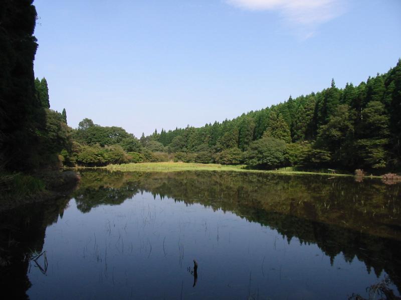 くれ沢の池:悟入谷国有林
