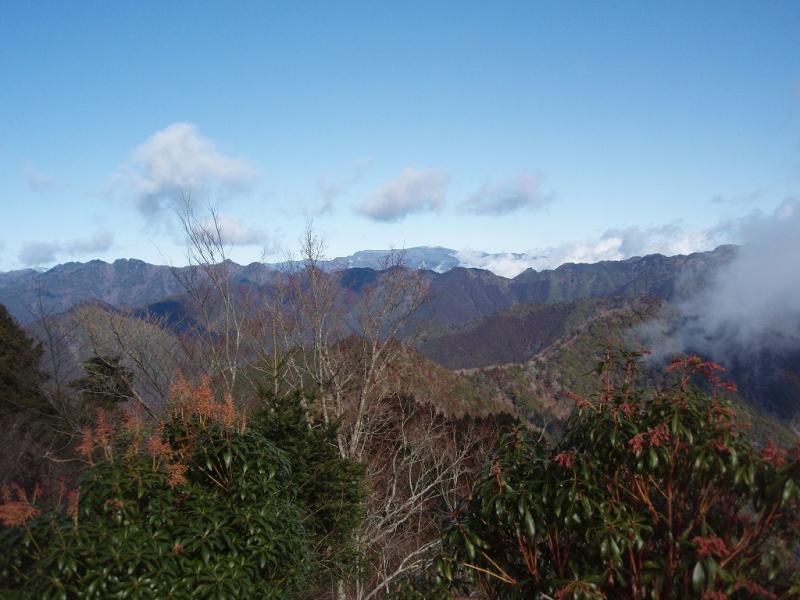 大又ゲジョ山より遠望:大又国有林