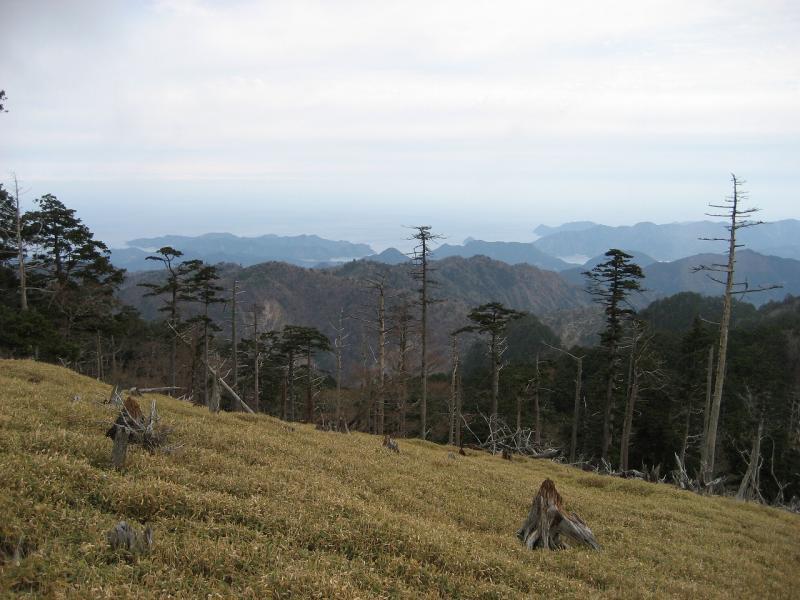 正木嶺から尾鷲を望む:大杉谷国有林