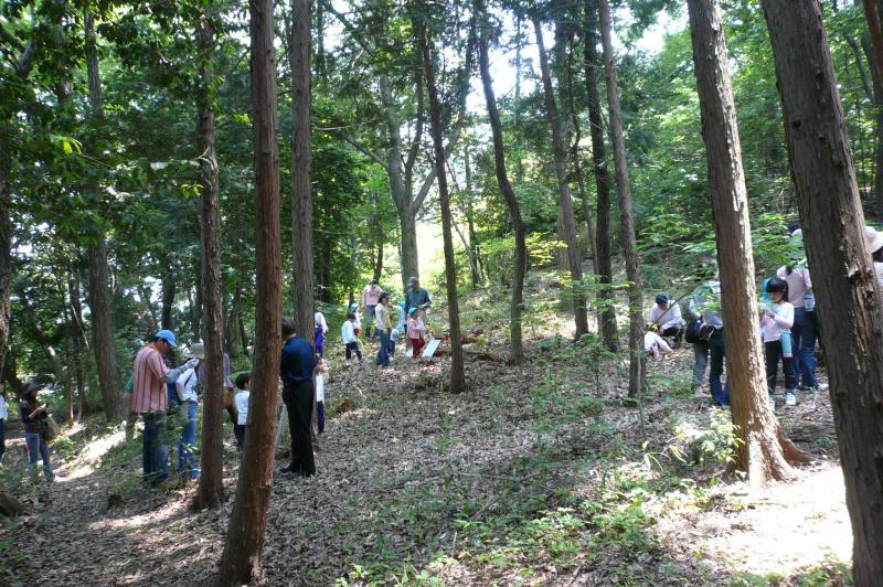 2.遊々の森