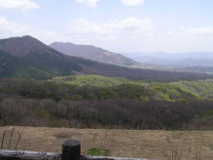 蒜山高原風景林