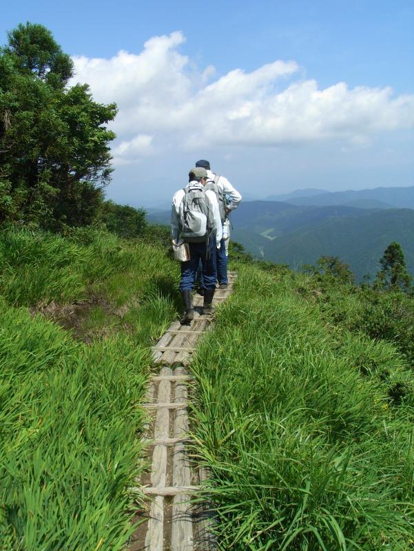 山田山国有林内の三国山湿原植物群落保護林