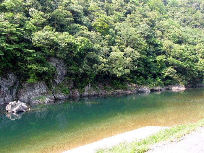 大魚国有林と吉賀皮(津和野町)