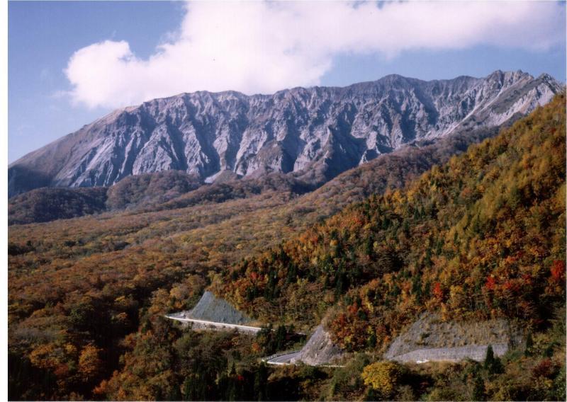 大山隠岐国立公園:大山国有林(南壁)