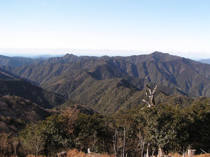 大塔山国有林山頂からの眺め