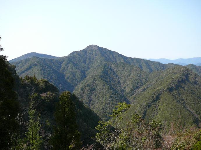 神秘の黒蔵谷国有林