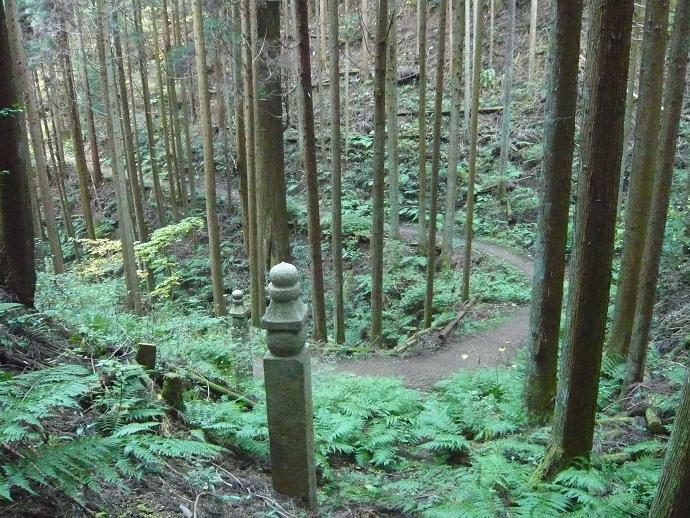 高野山国有林の世界文化遺産町『石道』