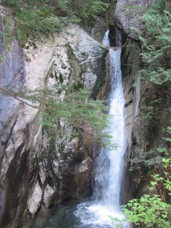 右谷国有林の下流に位置する竜頭の滝
