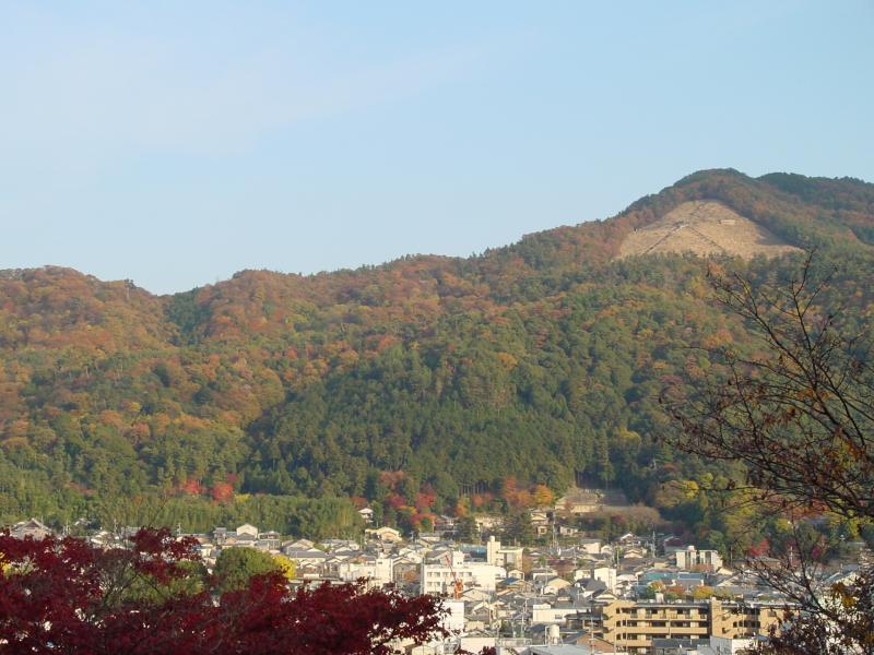 東山風景林全景 【東山】