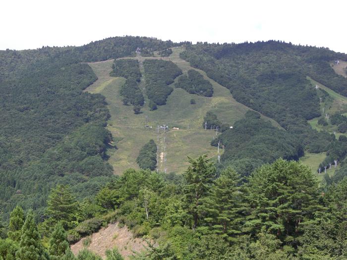 スキー場(夏)
