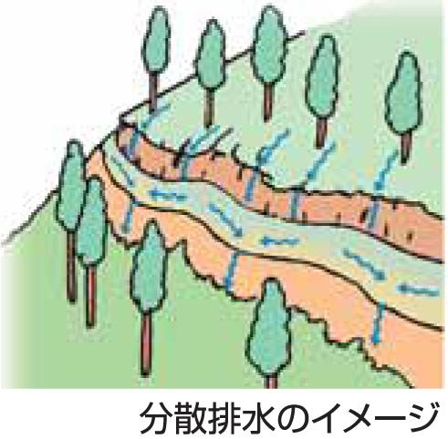 Ⅵ 森林作業道づくり-1
