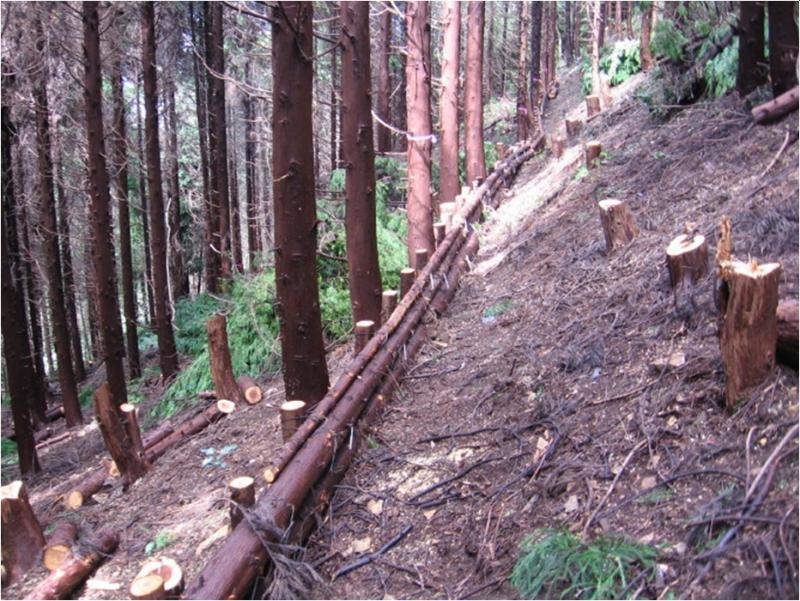 保安林整備事業(間伐材を利用した筋工)