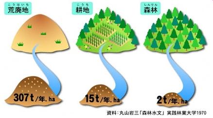 森林の機能