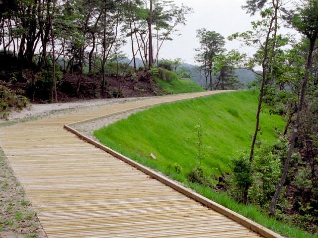 共生保安林整備事業(滋賀県)