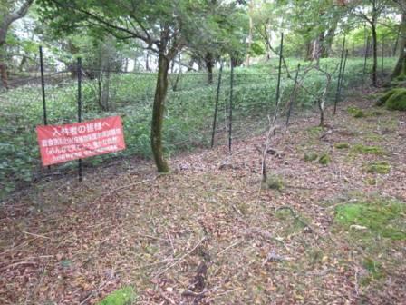 シカネットによる植生の保護