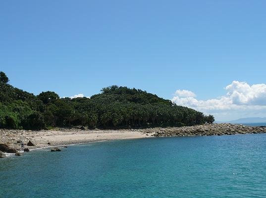 枇榔島自然観察教育林-樹林と砂浜