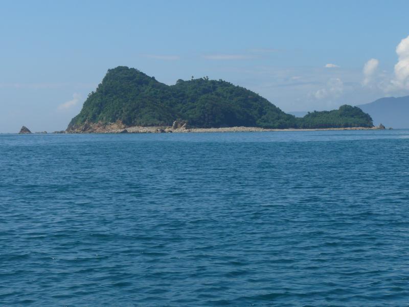 写真:枇榔島自然観察教育林