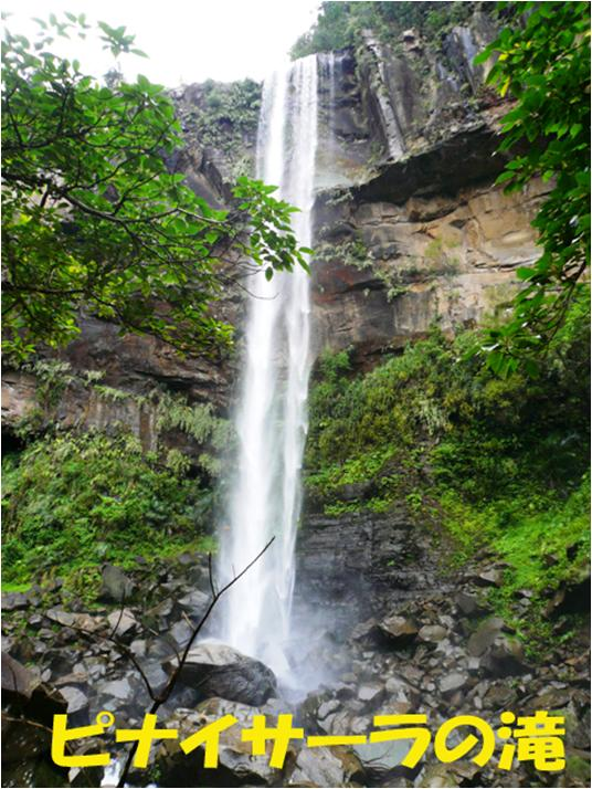 西表自然休養林ーピナイサーラ滝