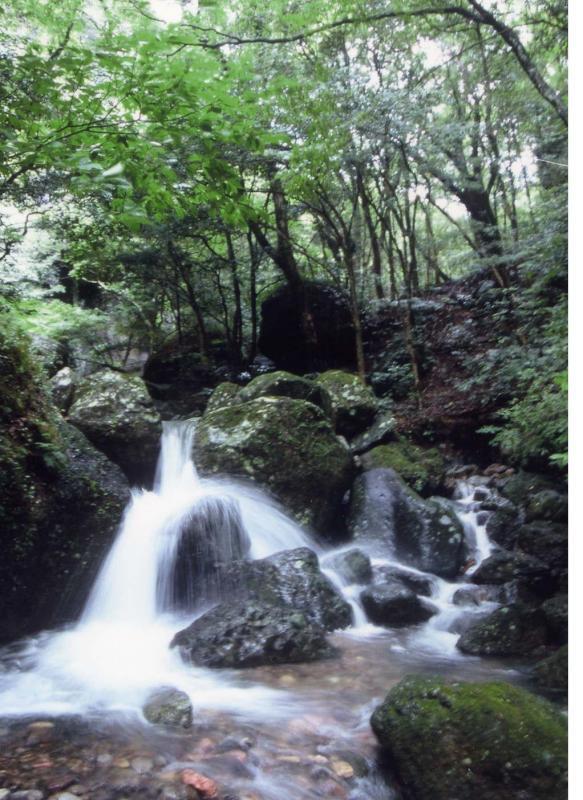 黒髪山自然休養林ー竜門峡清流