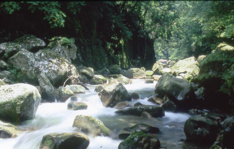 宮崎自然休養林ー加江田渓谷