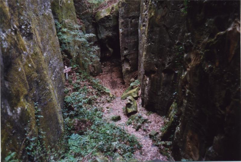 宮崎自然休養林ー空池