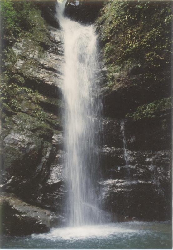 宮崎自然休養林ー万葉の滝