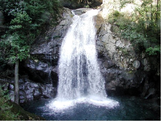 おおすみ自然休養林ー高隈渓谷