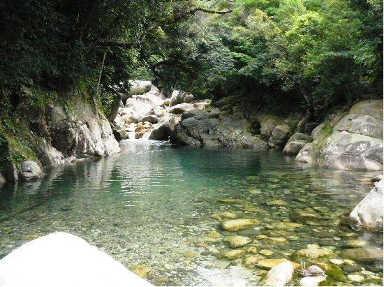 おおすみ自然休養林ー猿ヶ城渓谷