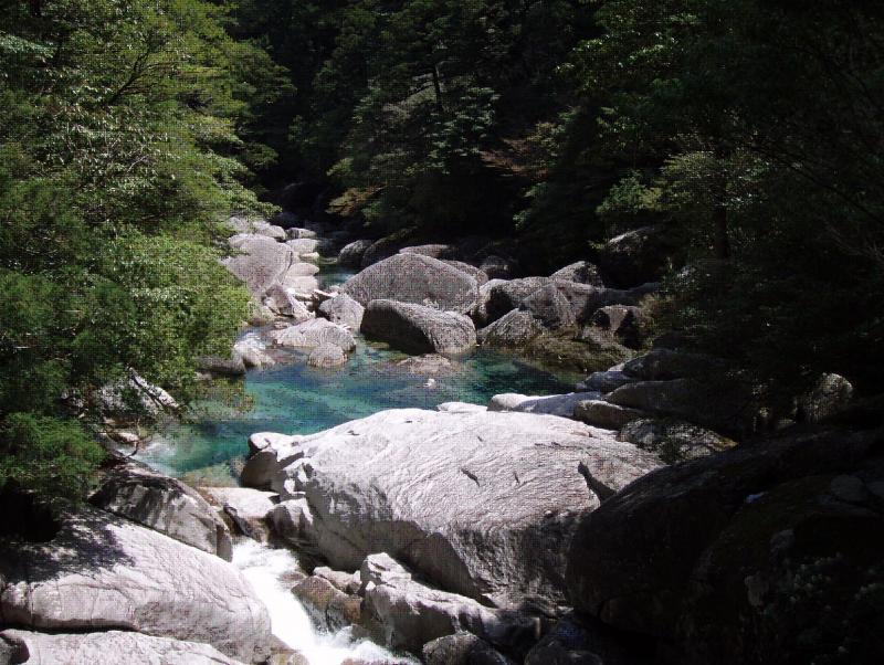 屋久島自然休養林ー荒川