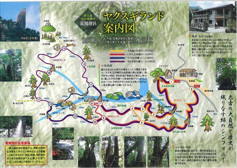 屋久島自然休養林ー荒川(ランド)施設