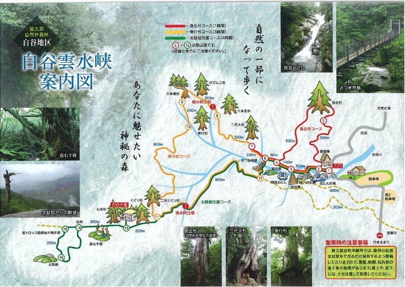 屋久島自然休養林ー雲水峡施設