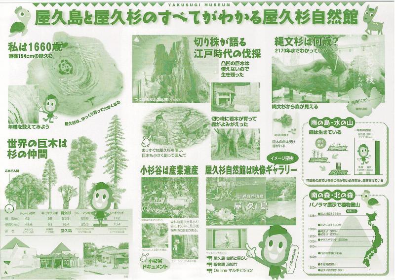 屋久島自然休養林ー屋久杉自然館