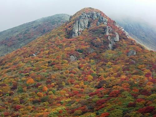 星生山の紅葉