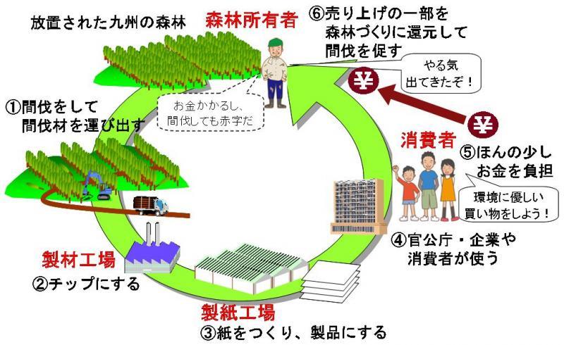 画像:「木になる紙」の概念図