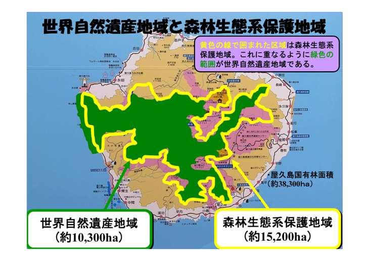 世界自然遺産地域と森林生態系保護地域